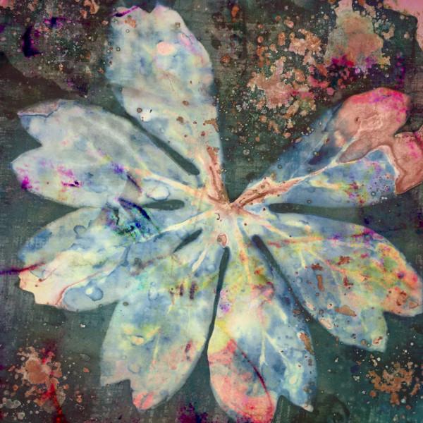 Burst of Inspiration by Lesley Riley