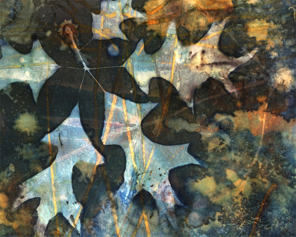 Golden Oak by Lesley Riley