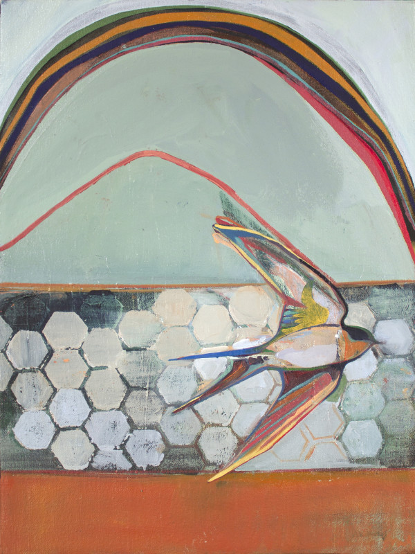 rainbow bird by Charlotte Evans