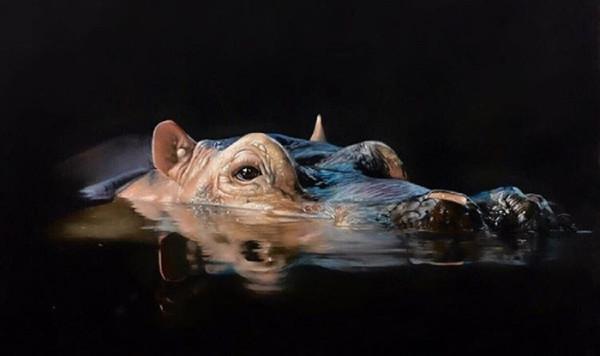 "1st Place – Clare Parkes - ""Night-time Encounter"" – clareparkesportraits@gmail.com by Clare Parkes"