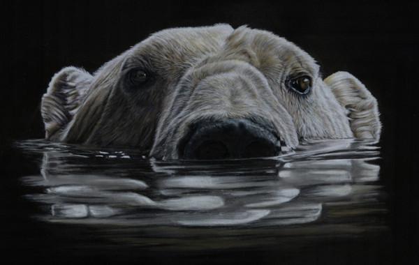 "4th Place – Overall - Lisa Ann Watkins – ""Polar Reflection"" - http://www.animalartbylaw.co.uk/ by Lisa Ann Watkins"