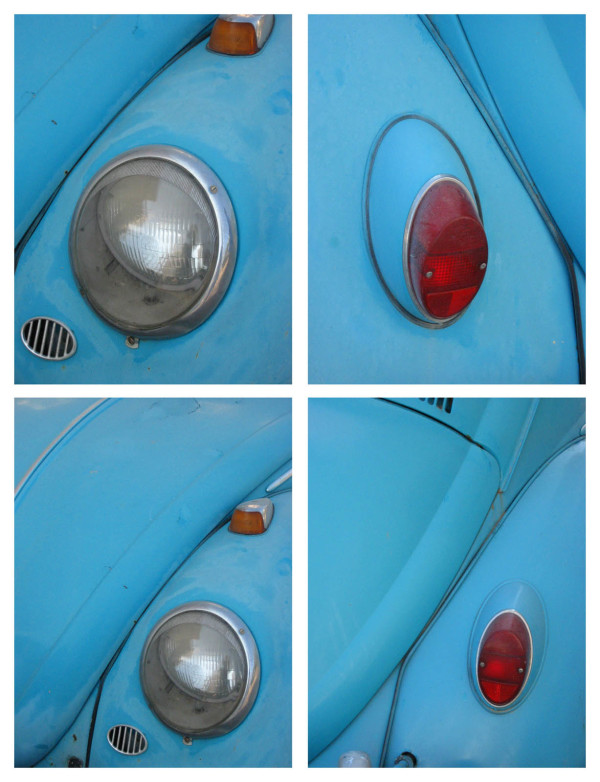 Beetle Blue - Limited Edition 1 of 2 by Tina Psoinos