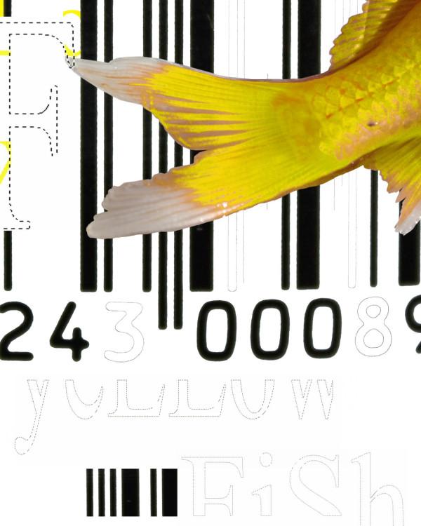 Brooklyn Yellow (Fish) 1/2 by Tina Psoinos