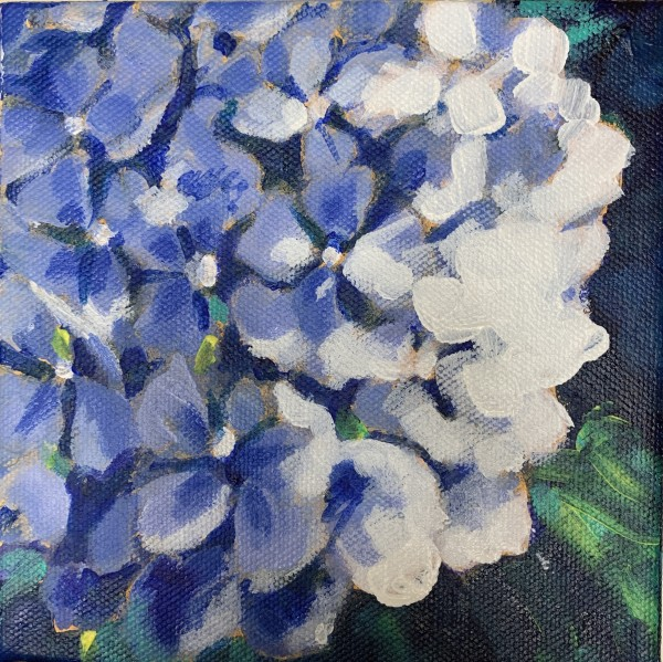 Hydrangea series: Blue too by Marcia Hoeck