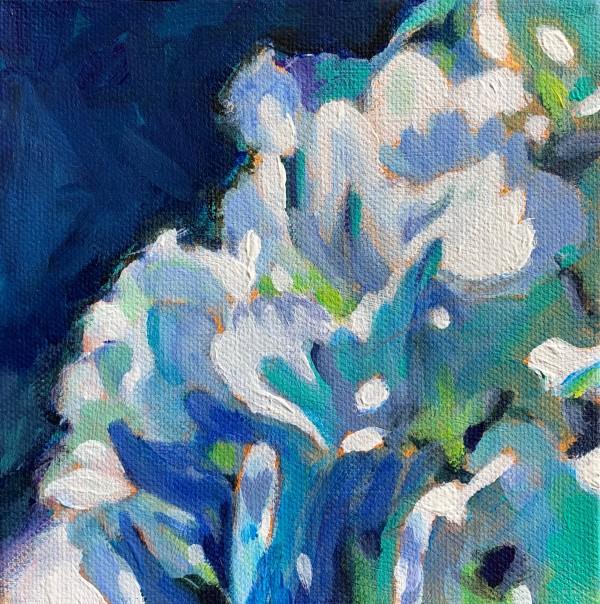 Hydrangea series: Glow by Marcia Hoeck