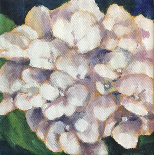 Lynn's hydrangeas 1 by Marcia Hoeck