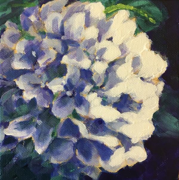 Lynn's hydrangeas 2 by Marcia Hoeck