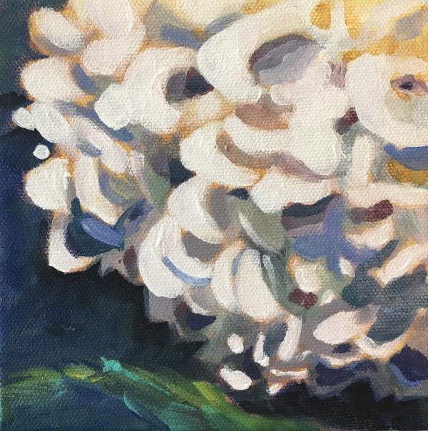 Lynn's hydrangeas 3 by Marcia Hoeck