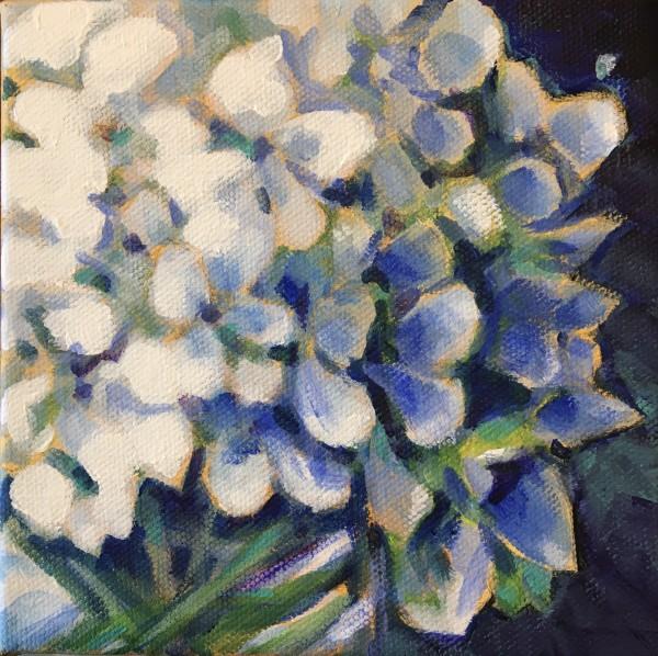 Lynn's hydrangeas 4 by Marcia Hoeck