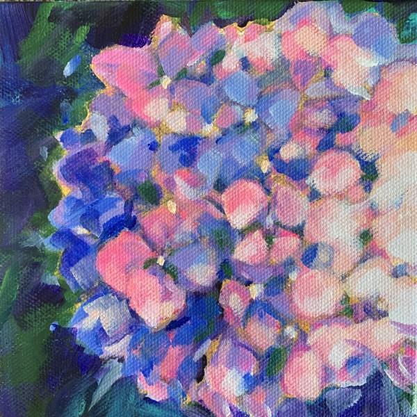 Lynn's hydrangeas 5 by Marcia Hoeck