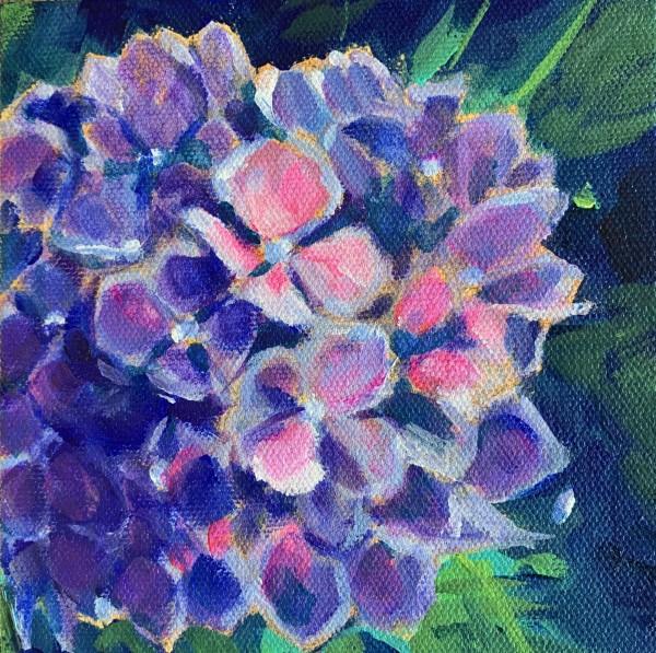 Lynn's hydrangeas 6 by Marcia Hoeck