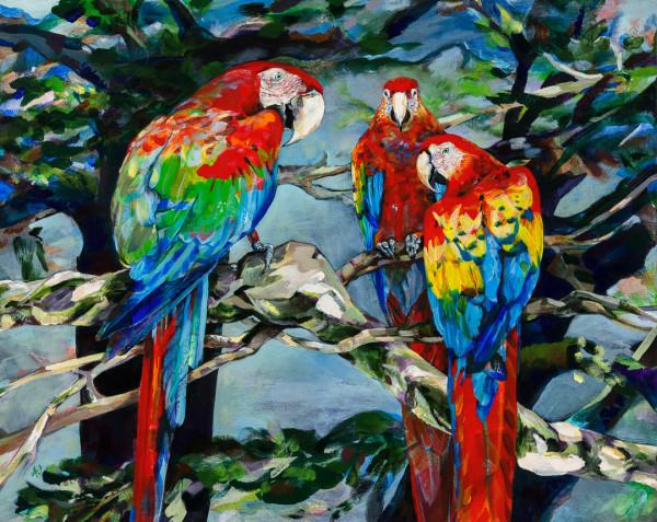 The Third Bird by Anna Iris Graham