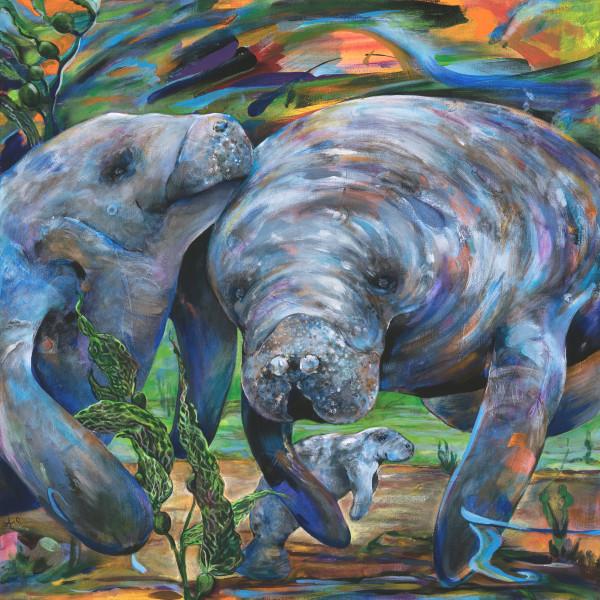 Manatees by Anna Iris Graham
