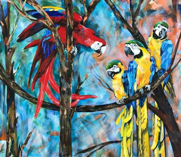 The Company (Macaws) by Anna Iris Graham