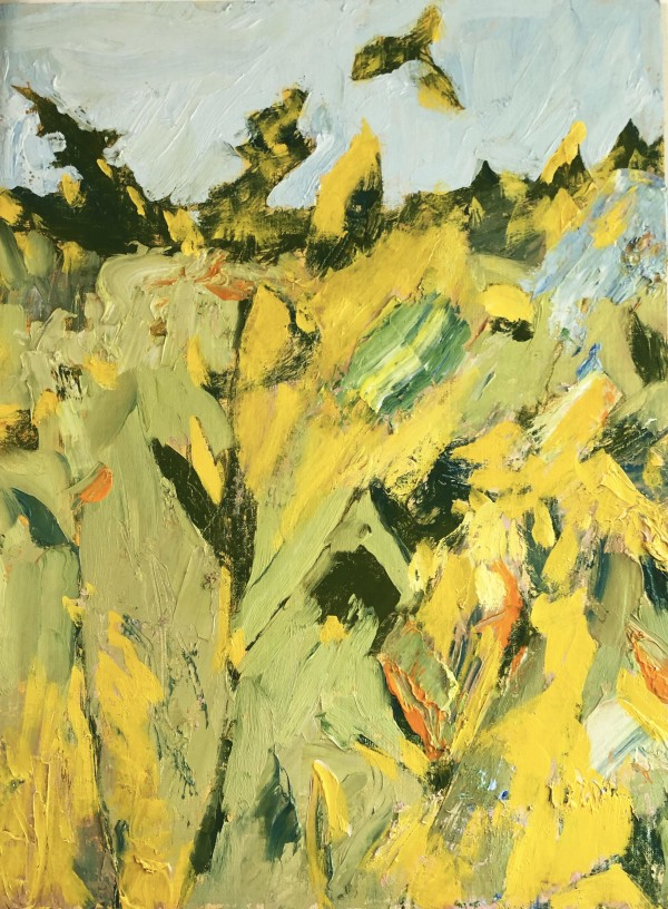 Maine Meadow by PATRICIA TEWES