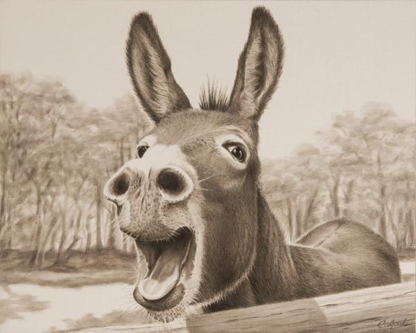 Donkey Hotey by Carol L. Acedo