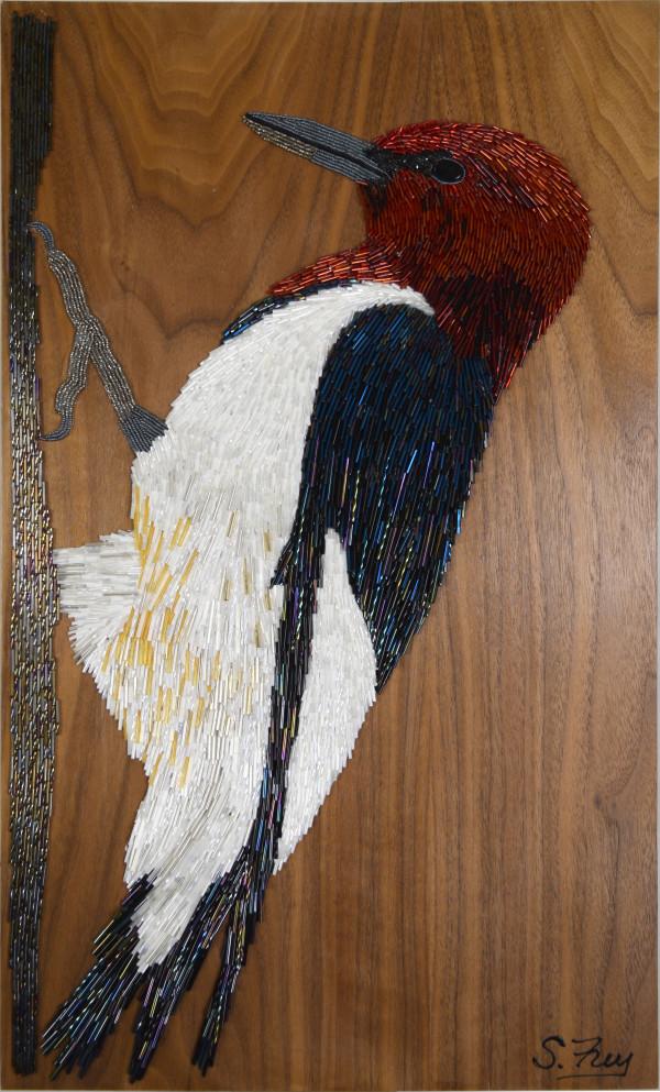 Gregory - Woodpecker by Sabrina Frey