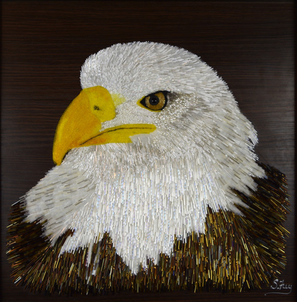 Spark - Bald Eagle by Sabrina Frey