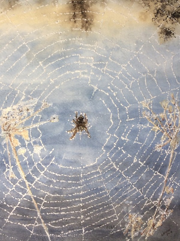 Colleen's Spider by Wanda Fraser