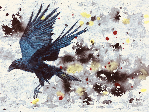 Raven in Flight by Wanda Fraser