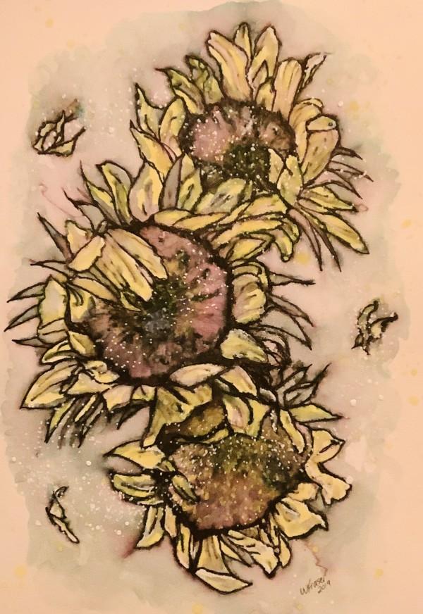 Sunflowers by Wanda Fraser
