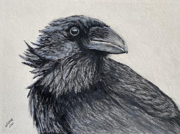 The Raven by Wanda Fraser