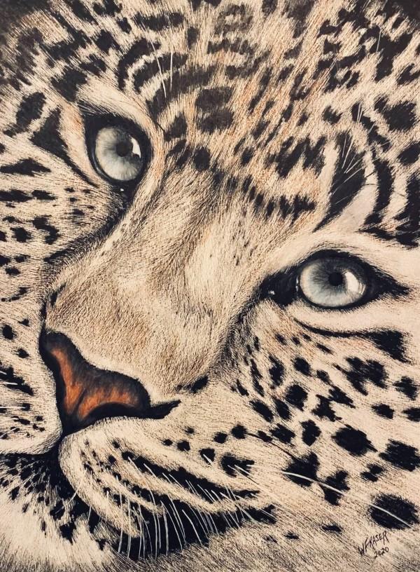 Leopard by Wanda Fraser