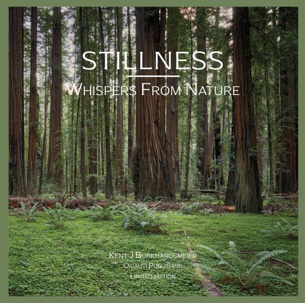 Stillness: Whispers From Nature by Kent Burkhardsmeier