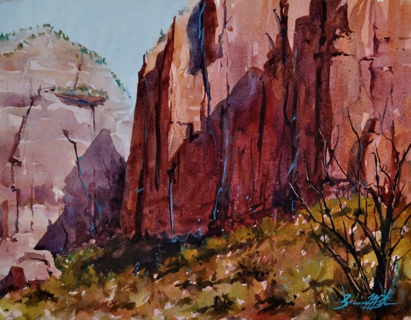 Canyon Walls by Brienne M Brown