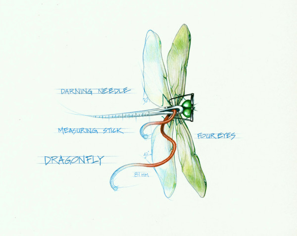 Dragonfly (Framed Original) by Rick  Nass
