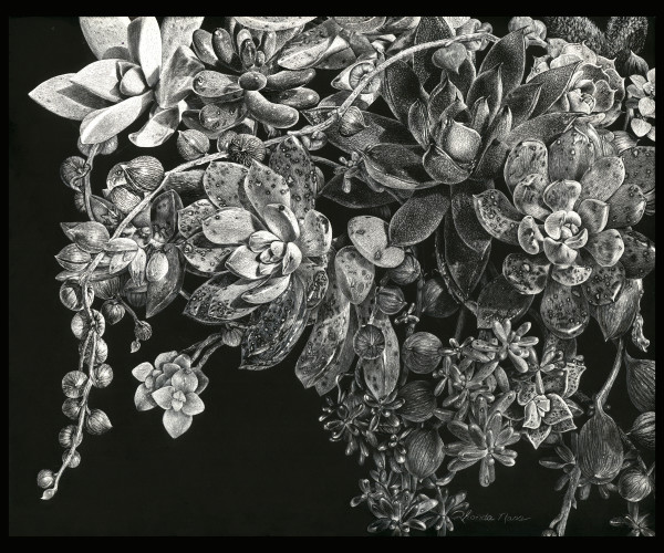 Abundant Succulence #2 (Framed) by Rhonda Nass