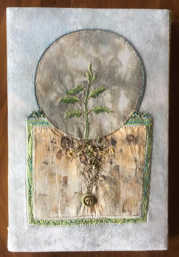 Mindfulness by Cynthia Quinn