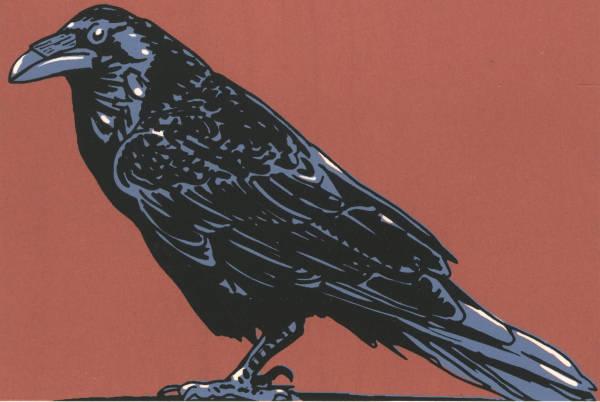 Raven (Framed) by John Miller