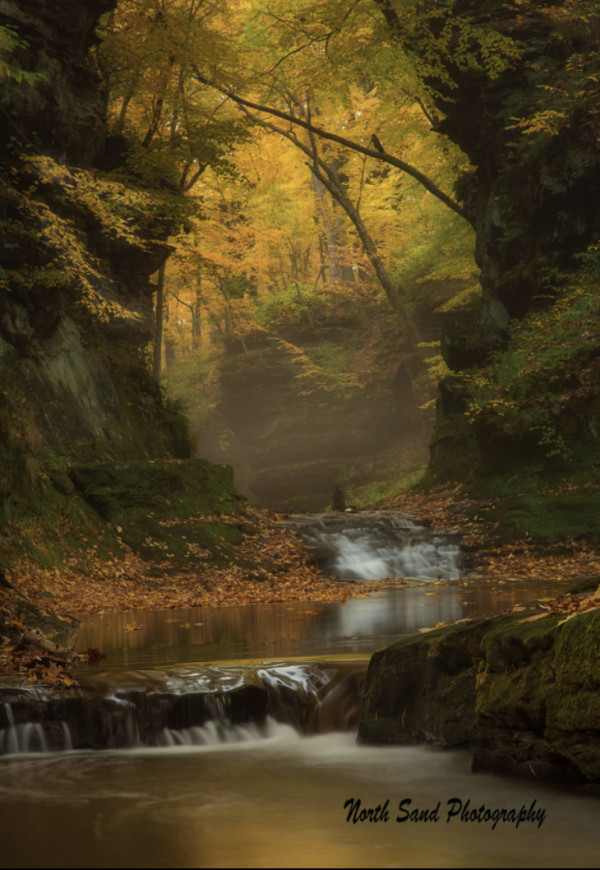 Mystic Morning (unframed print) by Mike Murray