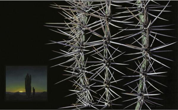 Sonoran Desert Cactus at Sunset (Framed print) by Rhonda Nass