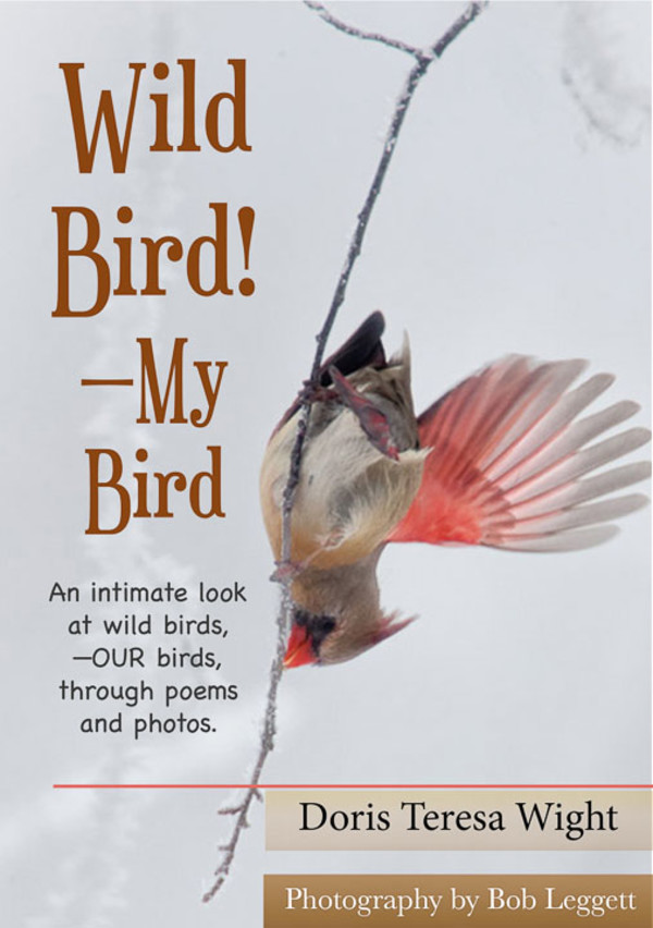 Wild Bird (book) by Bob Leggett