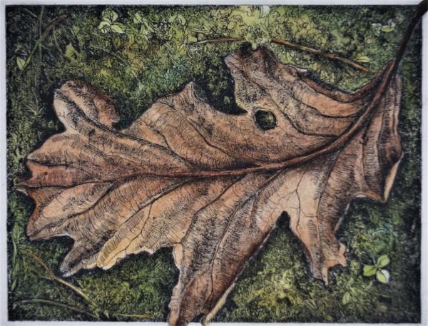 Leaf Life (Unframed) by Julie Sutter-Blair