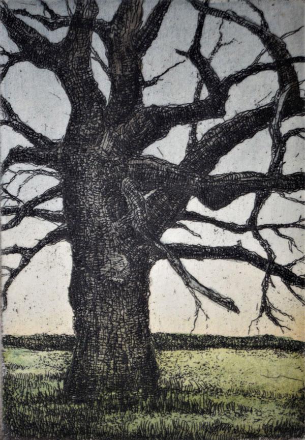 Tim's Tree (Framed) by Julie Sutter-Blair