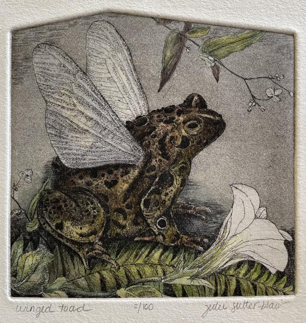 Winged Toad (Framed) by Julie Sutter-Blair