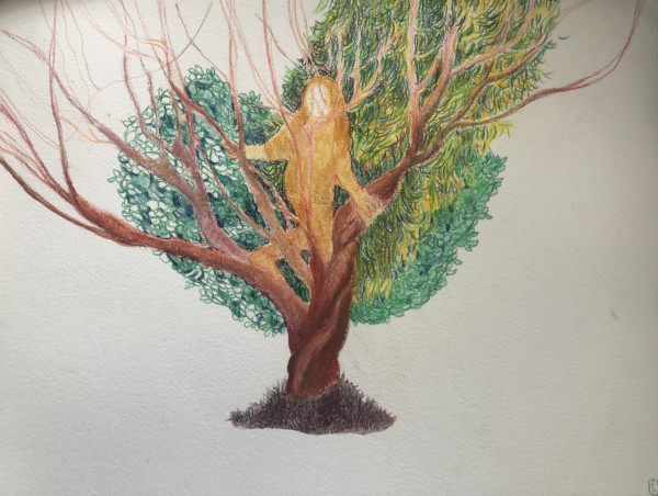 stories from the park: Girl tree by CLARE SMITH