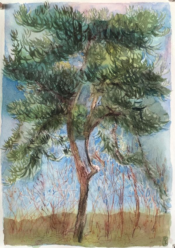 Lone Pine #5, (William Harvey hospital car park) (copy) by CLARE SMITH