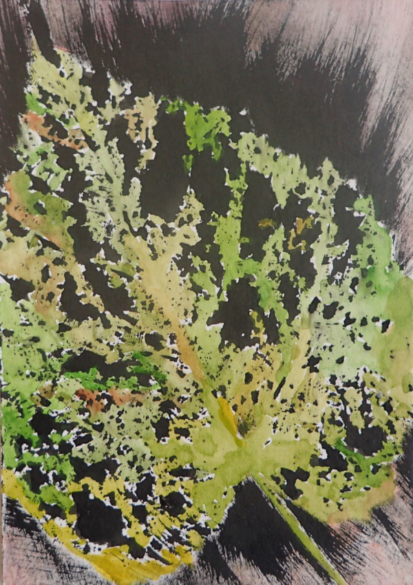 Gathered leaves #6 by CLARE SMITH