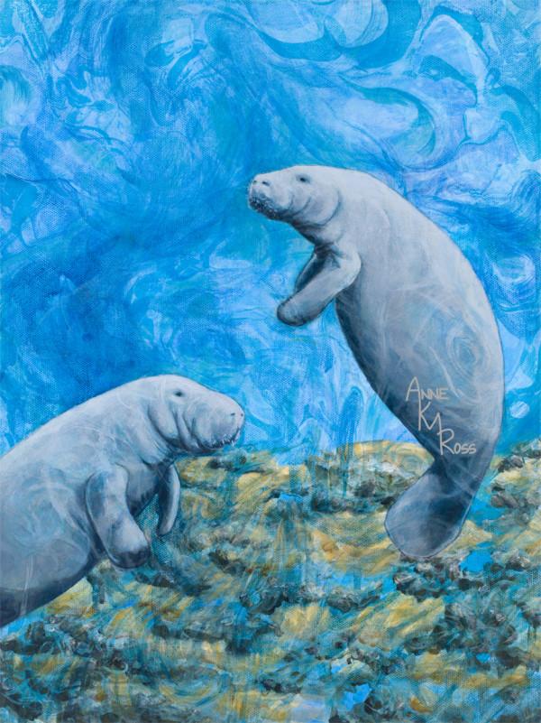 Slow Swimmers by Anne KM Ross