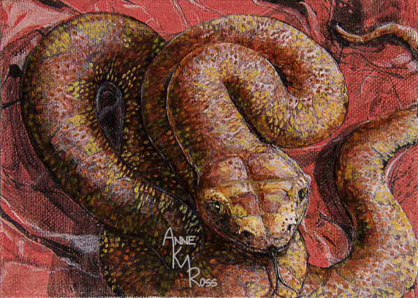 Twisting by Anne KM Ross