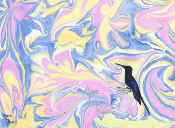 Resting Hummingbird by Anne KM Ross