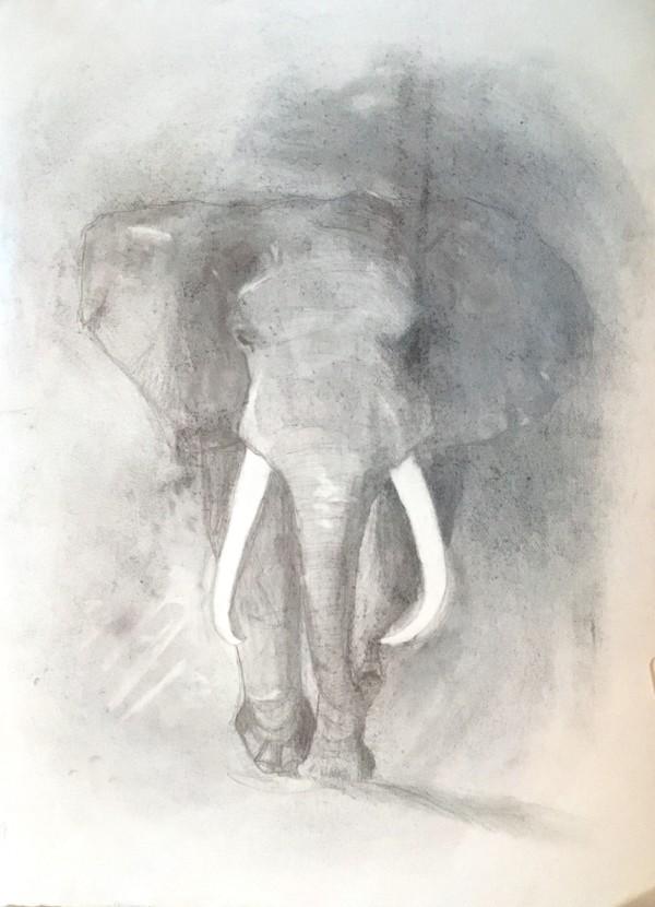 Elephant by Marina Marinopoulos