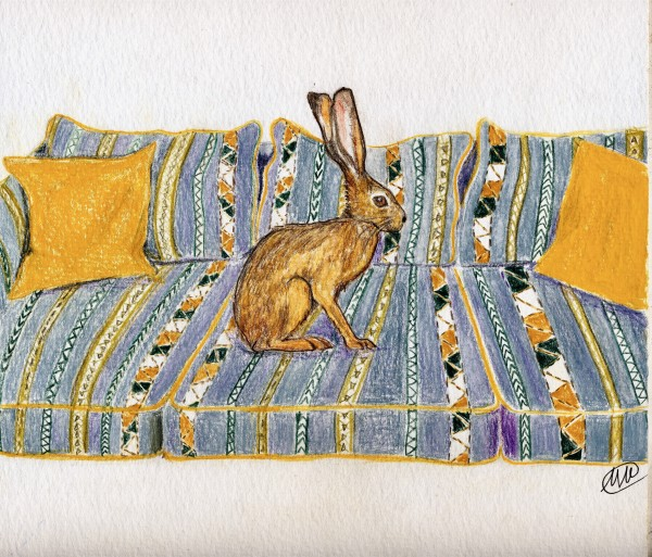 Hare on striped sofa by Marina Marinopoulos