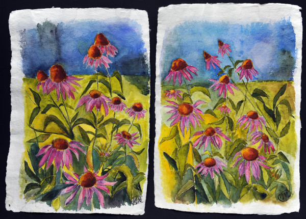 Echinacea diptych by Marina Marinopoulos