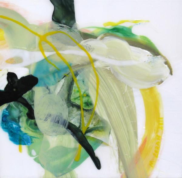 Limitless Fields by Mary Zeran