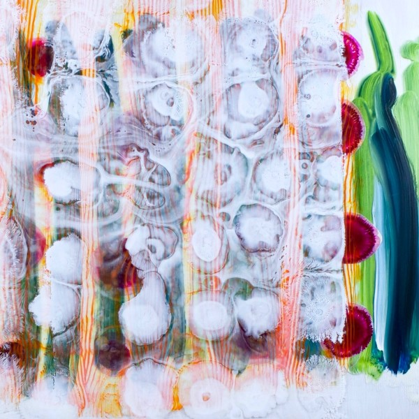Splitting and Splitting by Mary Zeran